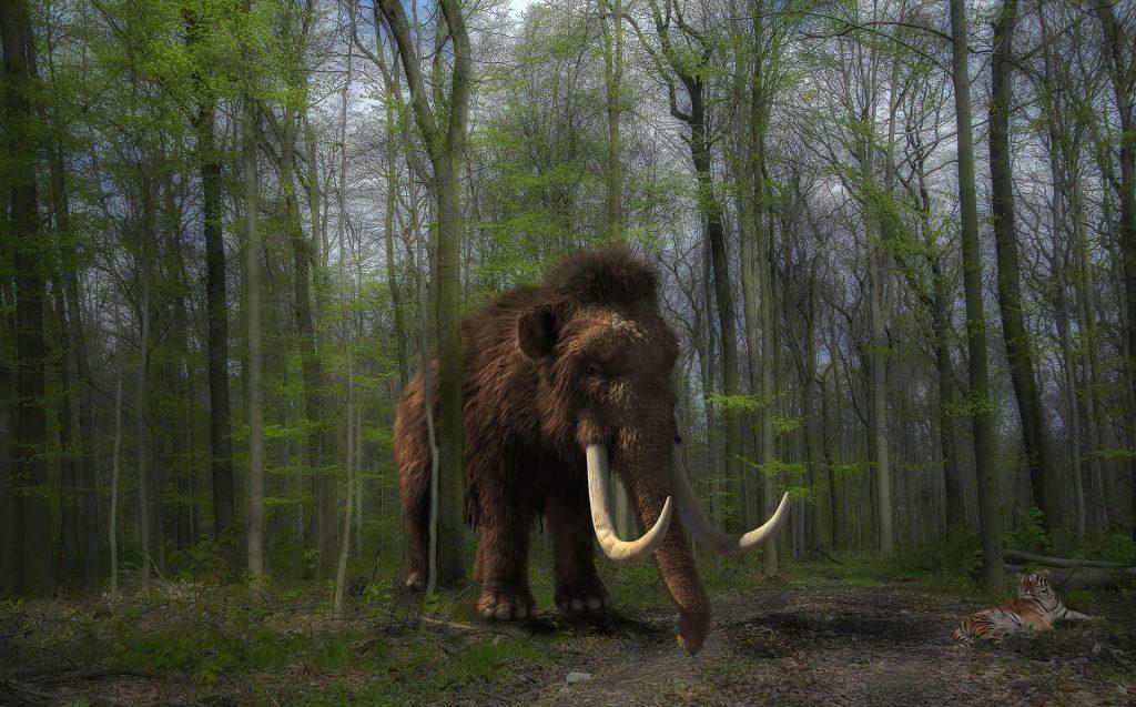 Animales extintos que podrían volver a la vida gracias a la ciencia