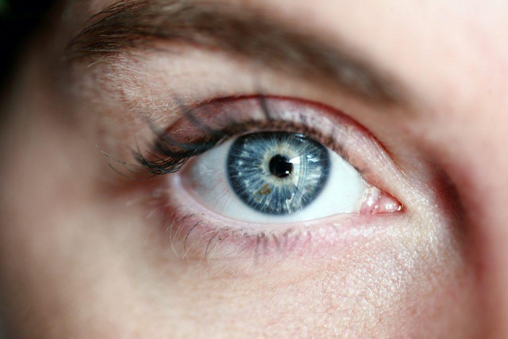 La increíble evolución del ojo