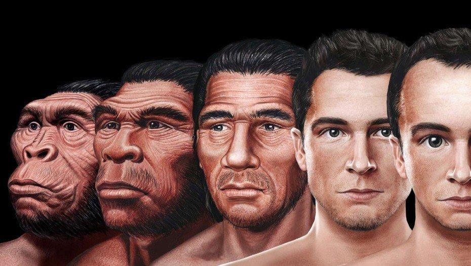 ¿Cómo será el rostro humano en el futuro?